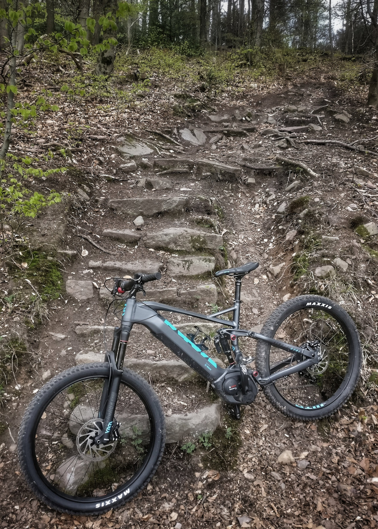 KONA Remote CTRL vor steiler Naturtreppe
