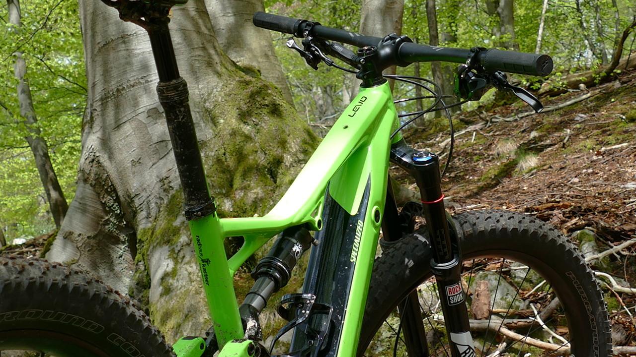 Turbo Levo comp im Wald